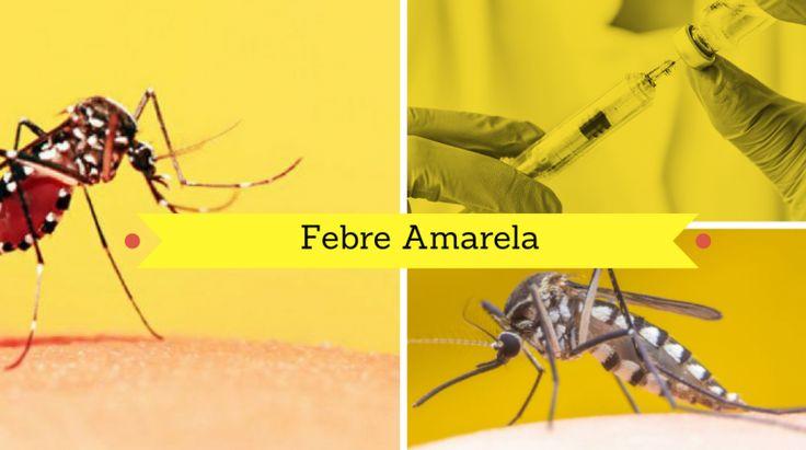 Saiba Tudo sobre a Febre Amarela