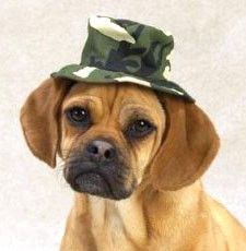 """Casual Canine Green Camo Bucket Hat Large (7"""") features a wide, bucket-style brim, an elasticized chinstrap for a secure fit, and ear holes for comfort. #dog"""