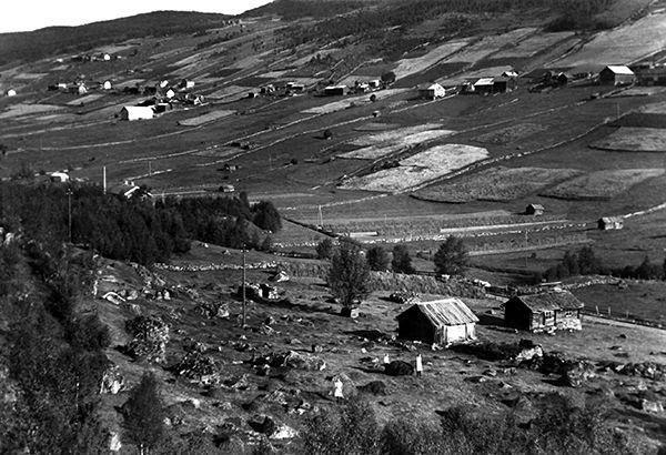 Gamle tider landbruk. Old times farming
