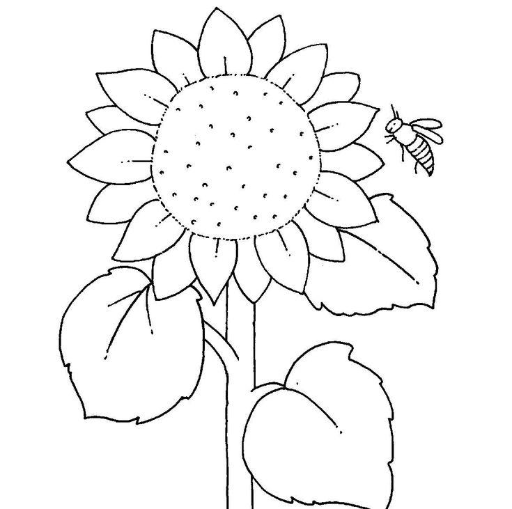 Drucken Sie Die Kostenlose Malvorlage Fur Ihr Kind Aus Und Reichen Ihm Seine Buntstifte Dann Kan Sonnenblume Basteln Kostenlose Malvorlagen Sonnenblumen Malen