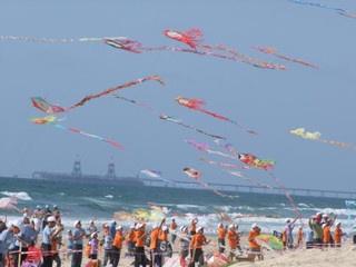 Kite Club India   Kite Flyers India   Kite Festival India - From wp.com