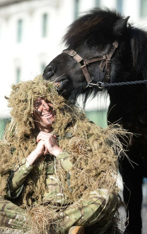 """j-wolf-harding: """" Great picture of Sniper Corporal Pat McKinney, 31, from 6th Battalion The Royal Regiment of Scotland, discovers that his sniper suit is somewhat irresistible to the Regimental Mascot, Shetland Pony, Cruachan 4th. Pat and Cruachan..."""