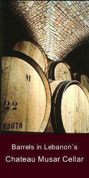 Barrels of Wine, Chateau Musar, Lebanon