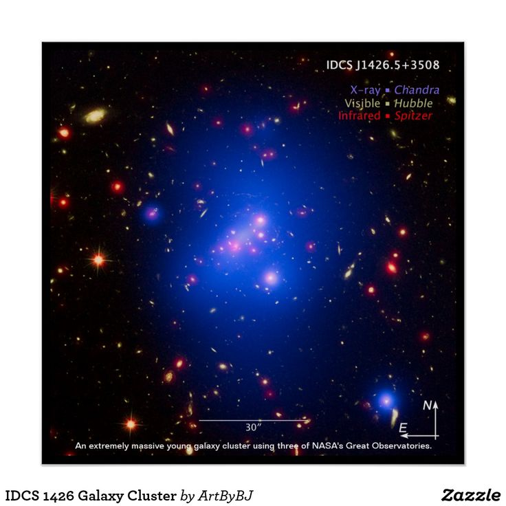 Poster of IDCS 1426 Galaxy Cluster. . .   Astronomers have made the most detailed study yet of an extremely massive young galaxy cluster using three of NASA's Great Observatories. This multi-wavelength image shows this galaxy cluster, called IDCS J1426.5+3508 (IDCS 1426 for short), in X-rays recorded by the Chandra X-ray Observatory in blue, visible light observed by the Hubble Space Telescope in green, and infrared light detected by the Spitzer Space Telescope in red.