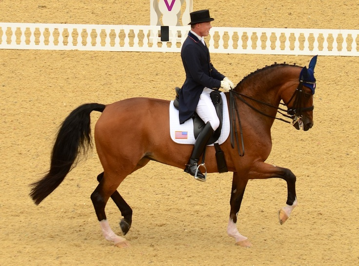 Jan Ebeling and Rafalca in the Grand Prix for Team USA. Photo by Jennifer Bryant.