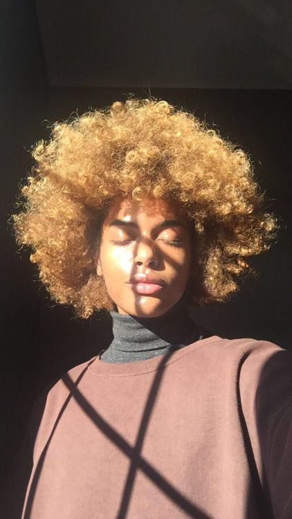 Coloration miel sur cheveux bouclés afro crépus naturels