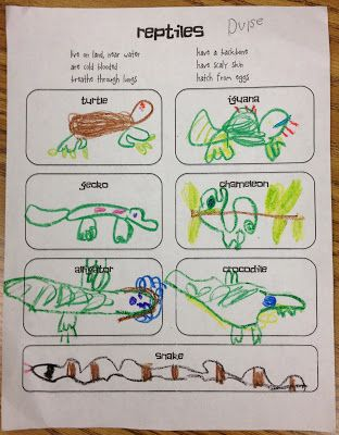 Little Miss Glamour Goes to Kindergarten: reptiles