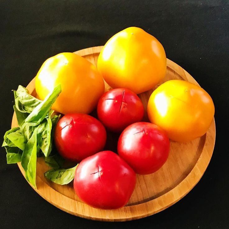 2017.05.27  無農薬のトマト2種 黄色と赤色 自家製のバジル  ケッカソース作ります  冷製パスタブルスケッタ と夏に向けてメニューが 変わります  2 kinds of organic pesticide tomato Yellow and red Homemade basil  I will make a checca sauce.  Cold pasta bruschetta And a menu for the summer to change.  #tomato #checcasauce #vsco #foodpic #foodstragram #vscocam #instafood #instavsco #IGersJP #foodphoto #onthetable #vsco_food #vscogram #fodstyling #feedfeed #mycommontable #foodvsco #foodlover #wine #winelover #barredevink #LIN_stragrammer #オトコノキッチン #kagoshima…