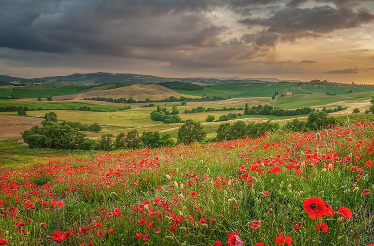 Val d'Orcia Photo by Jaroslaw Pawlak Photography Instructor
