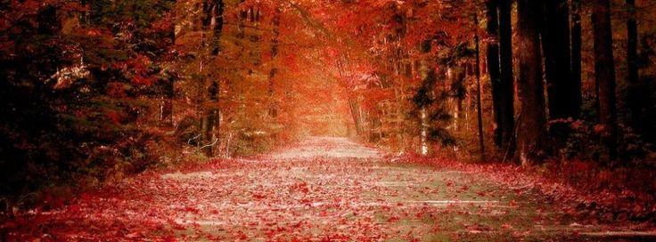facebook cover photos fall autumn - Google Search