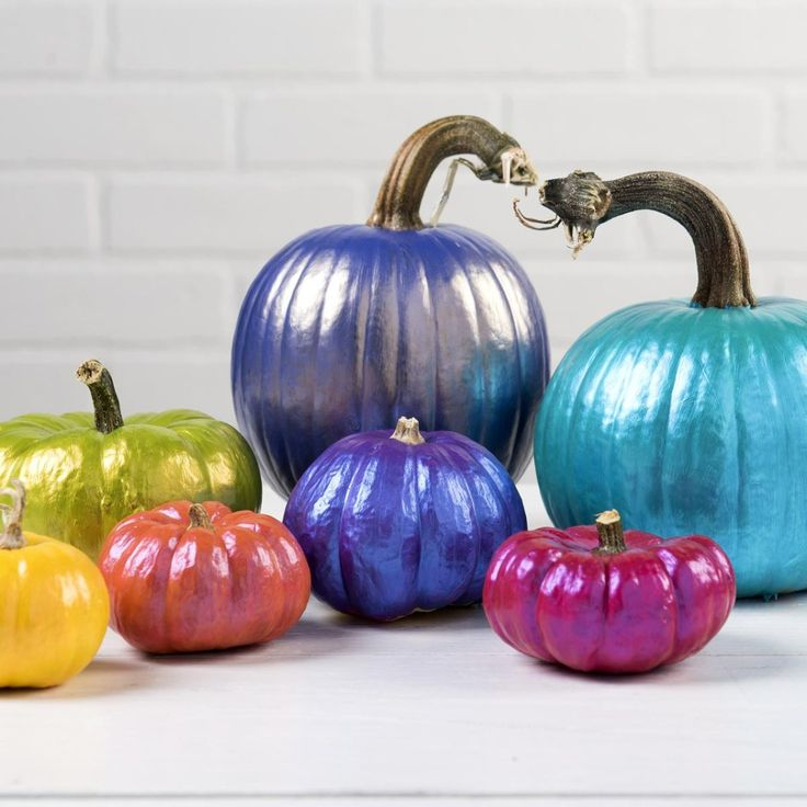 fall pumpkins created with color shift perfect for your modern tablescape