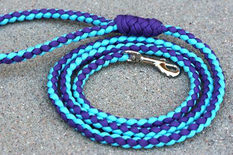Paraco Dog Leash