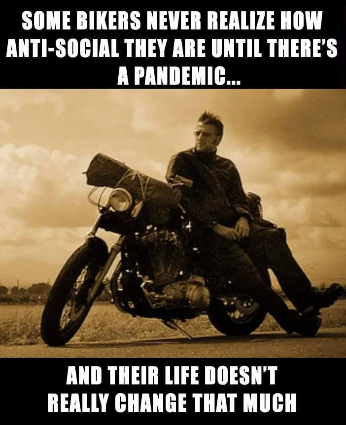 Funny Harley Memes : funny, harley, memes, Favorite, Motorcycle, Pictures, Memes, Quotes, Funny,, Biker, Inspiration,, Funny