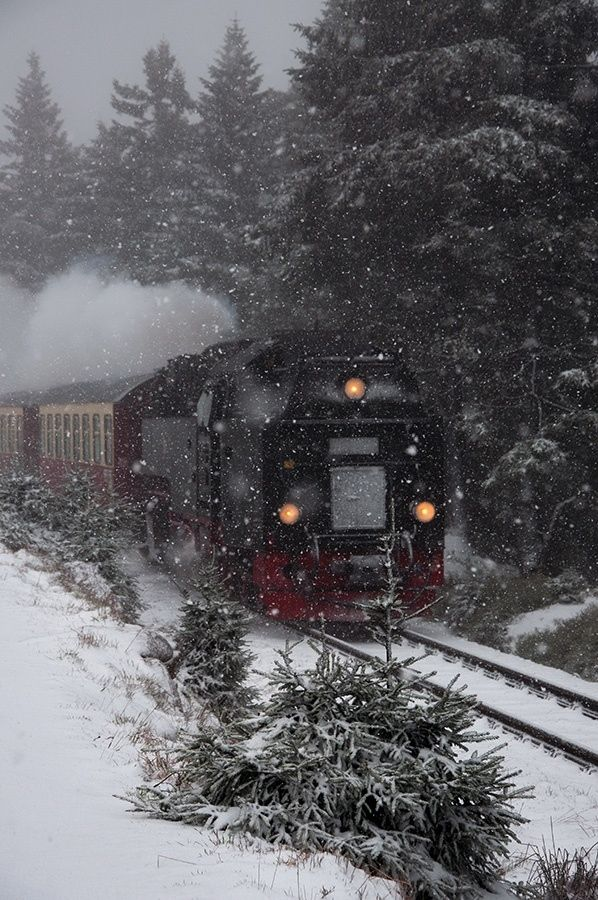 Steam Train in Harz - GERMANY