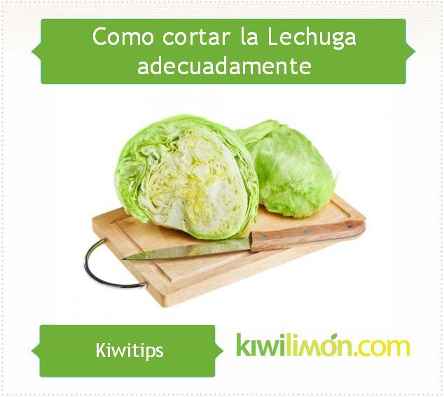 Conoce los mejores trucos para cortar adecuadamente la Lechuga que utilizas en tus recetas y ensaladas.