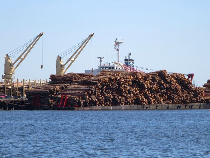 Raw logs and local sawmill jobs are exported to Asia from the Assembly Wharf at Nanaimo, British Columbia, Canada.