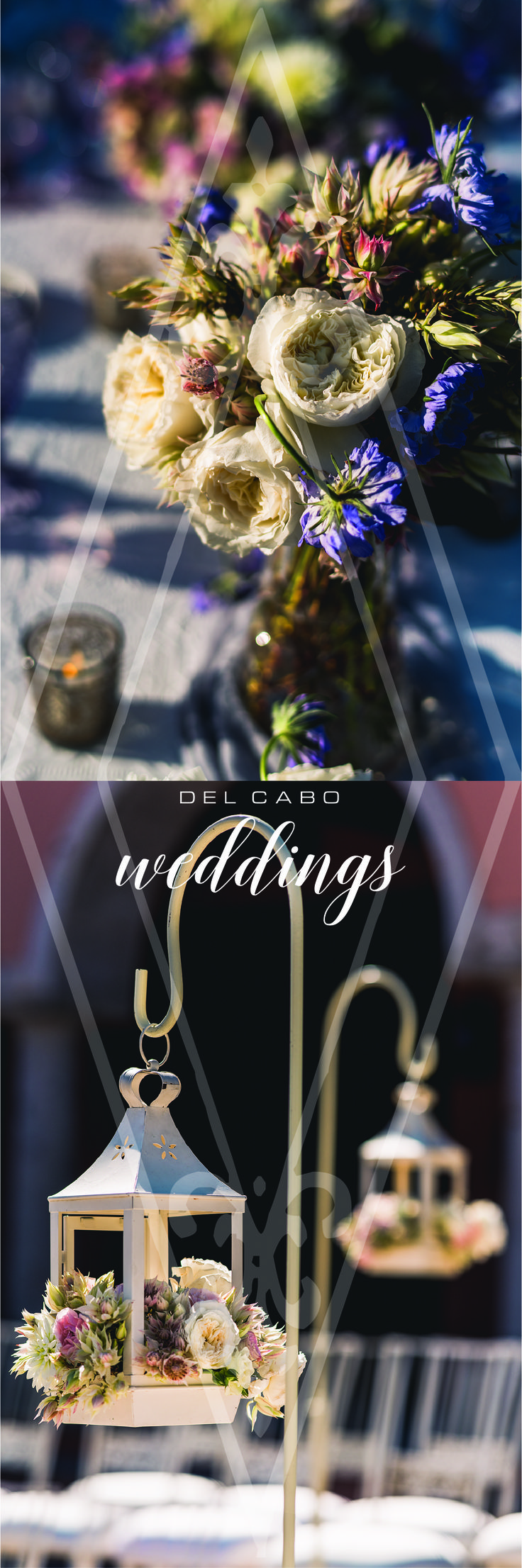 Get ready for your vintage wedding! Del Cabo Weddings has the best décor for that special day! Get inspired in our boards with the best wedding ideas!