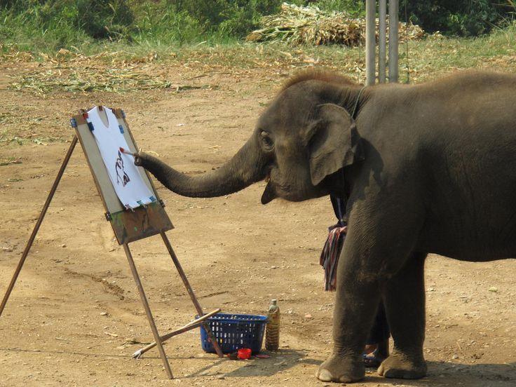 Elephant painter :)