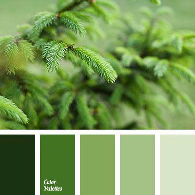 Harmonie vert sapin I Design I Couleur I Inspiration I Camaïeu I Peinture I