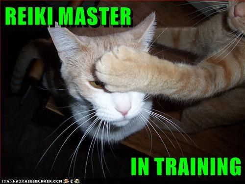 REIKI TRAINING. I offer training classes for all levels of Usui/Holy Fire Reiki®: Introduction, First/Second Degree Combined, Advanced/Master Teacher Combined and Karuna® Master Teacher. My Reiki training classes include instruction and attunements for treating yourself, other people and your beloved animal companions. For more on Reiki training, click the pic.
