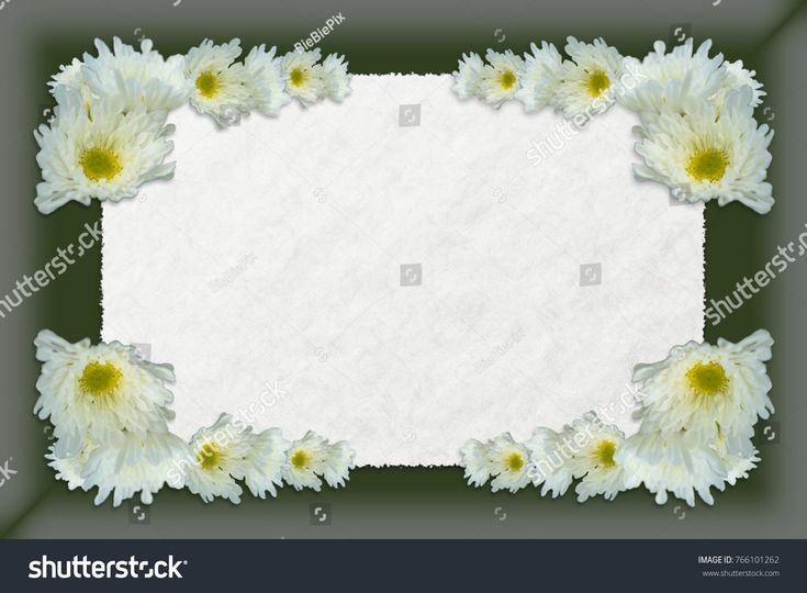 Three dimensional shadow box frame with parchment paper center bordered by pretty white Chrysanthemums with yellow centers.