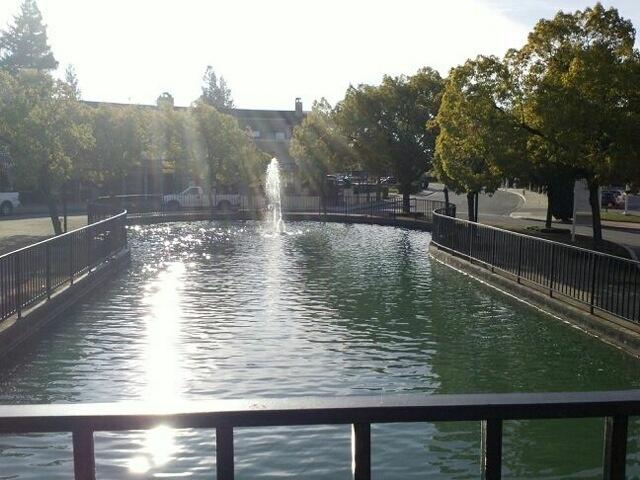 Calm waters: Aestheic Pleas