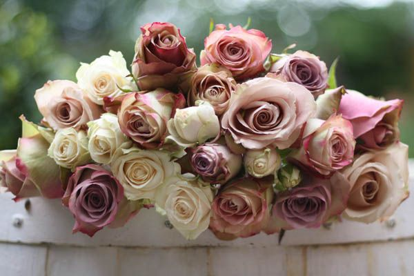 Dusky pink rose bouquet, a mixture of pink, nude and ivory roses.