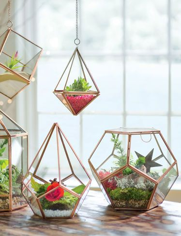 Elevate Your Decor with our Hanging Prism Glass Terrarium