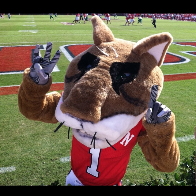 55 Best Images About College Mascots: American (AAC) On