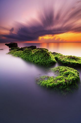 The Natural Duality. Matahari Terbit Beach, Sanur, Bali, Indonesia.