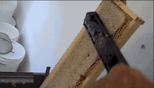 Imagine you're the one slicing off this honeycomb. | The 29 Most Satisfying GIFs In The World
