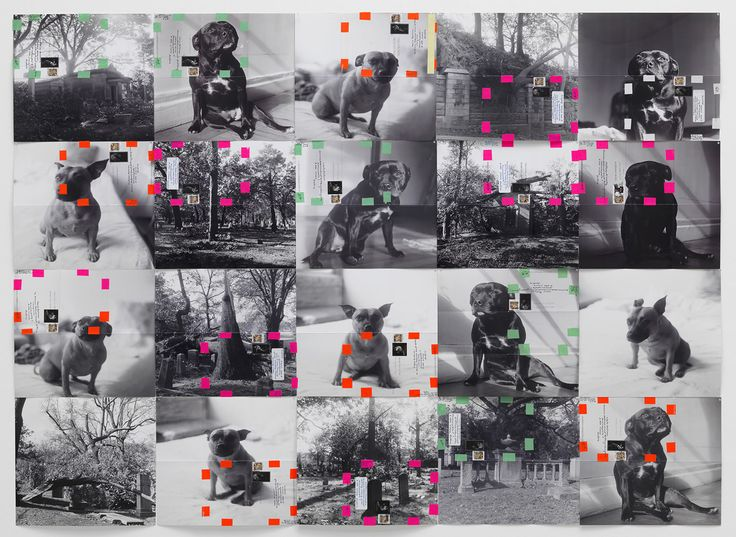 Moyra Davey maintains long-distance friendships by mailing out her photographs as letters...