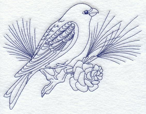 Pine Grosbeak (Bluework)