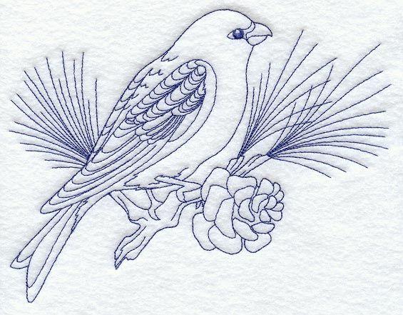 Pine Grosbeak (Bluework)