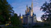 Are you a Florida Resident?  If so, for a limited time, you can enjoy 3 days at Disney World for $139 per person plus a 4th day for just $20 more (not including tax)!
