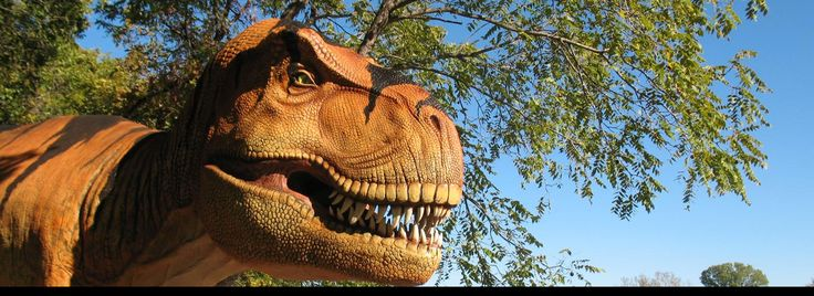 Dinosaurs Live! at the Heard Natural Science Museum& Wildlife Sanctuary