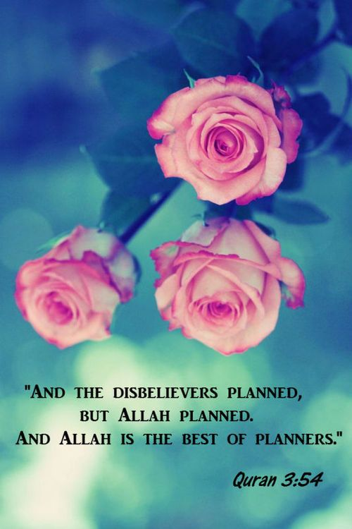 """And the believers planned, but Allah planned. And Allah is the best of planners."" Qur'an 3:54"