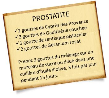 La lentisque pistachier est conseillée pour les varices, acouphène, les jambes lourdes, les hémorroïdes : Nos recettes avec la lentisque pistachier.