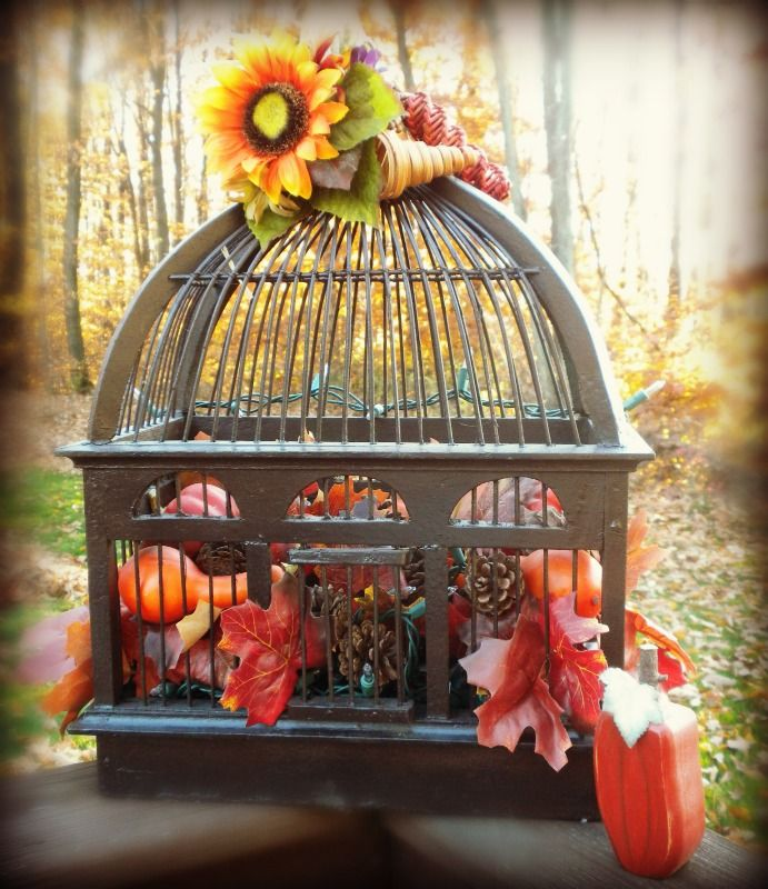 old fashion wood bird cage filled with leaves little pumpkins and gord you can - Old Fashion Halloween