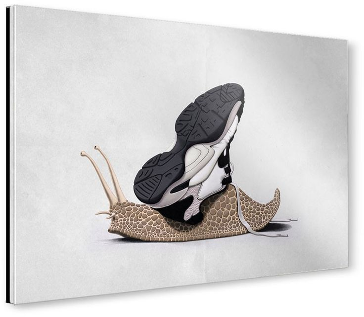 The Sneaker art | decor | wall art | inspiration | animals | home decor | idea | humor | gifts