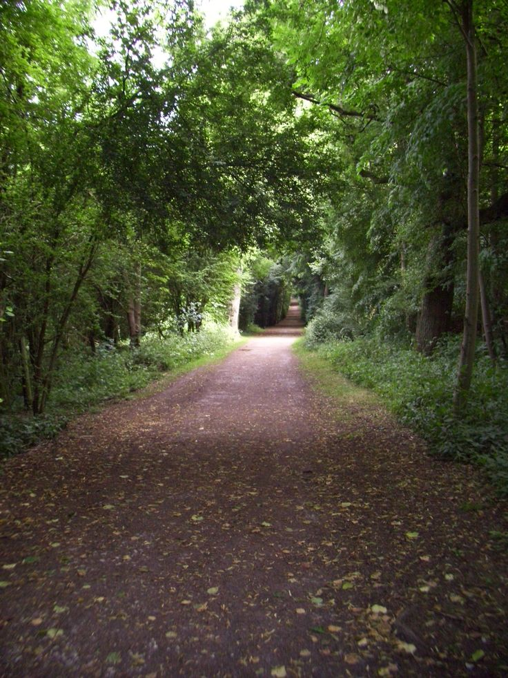 William Huckvale the architect of #TringPark was fascinated by light and dark. He created these #trails using foliage to enhance the appearance of light and dark areas