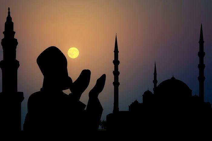 Gambar Ucapan Selamat Tahun Baru Islam 1441 Kumpulan Gambar Kartu Ucapan Selamat Tahun Baru Islam Muharram 1441 Hijri Di 2020 Gambar Selamat Tahun Baru Gambar Hewan