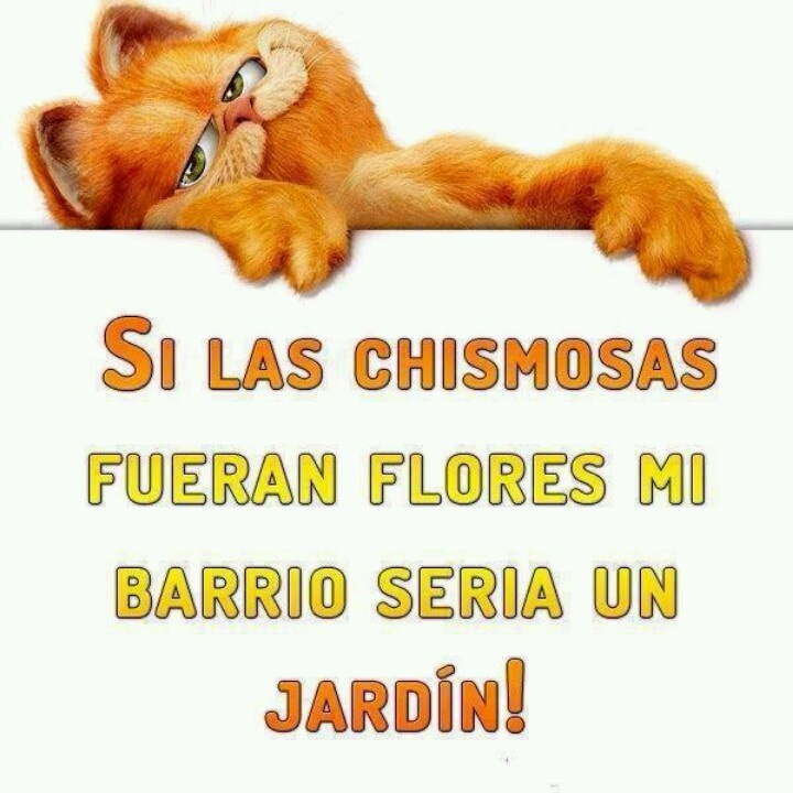 Funny Quotes In Spanish Funny Quotes About Life About Friends And