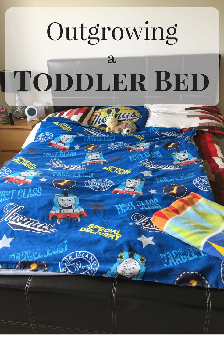 Outgrowing a Toddler Bed:When the time comes to move out of a toddler bed, do you make the jump to a small single bed, or go straight up to a single bed? Would you consider a double bed for a child who seems to relish the prospect of a spacious bed?