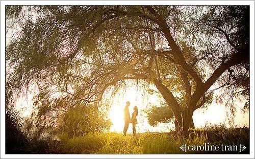 http://www.xatakafoto.com/fotografos/7-fotografos-de-bodas-en-flickr