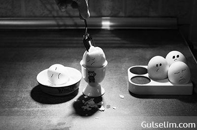 Yumurtaların hikayesi komik yumurtalar komik resim funny eggs story 13