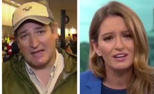 MSNBC's Katy Tur tries to burn Ted Cruz in heat of the TX disaster; bet she won't try that again