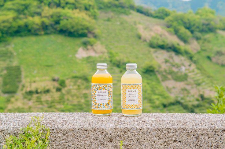 生産者の想いと共に味わいたい愛媛県無茶々園のみかんジュース