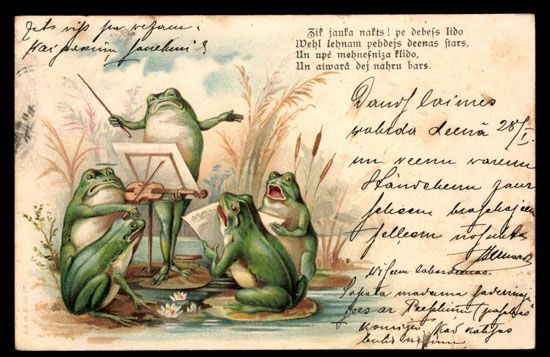 FROGS making music