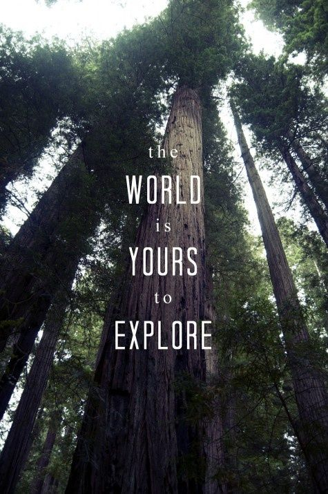 Get out in the world, surround yourself with nature and never lose your enthusiasm for discovery..